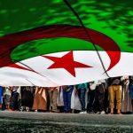 إسلاميو الجزائر  و حلم  السلطة