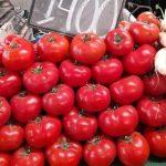 حمداني : أسعار الخضر و الفواكه ستنخفض خلال الأيام المقبلة
